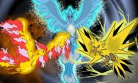 The Kanto Birds