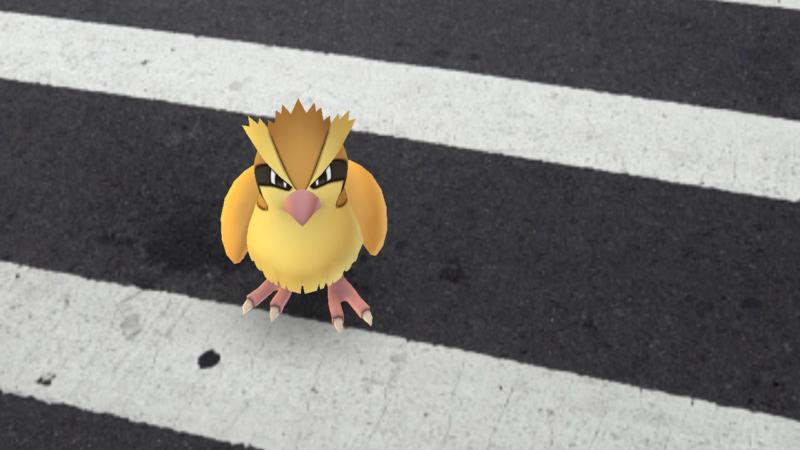 pokemon-go-pidgey