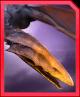 Alankylosaurus